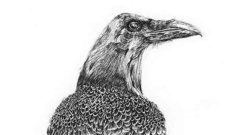 bird-on-a-branch001.jpg