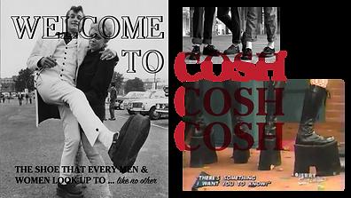 COSH PORTFOLIO6.png