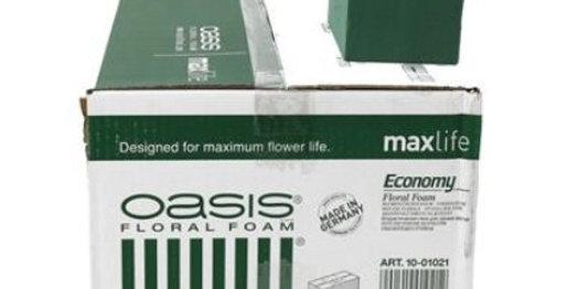 Oasis brick 8 cm *20