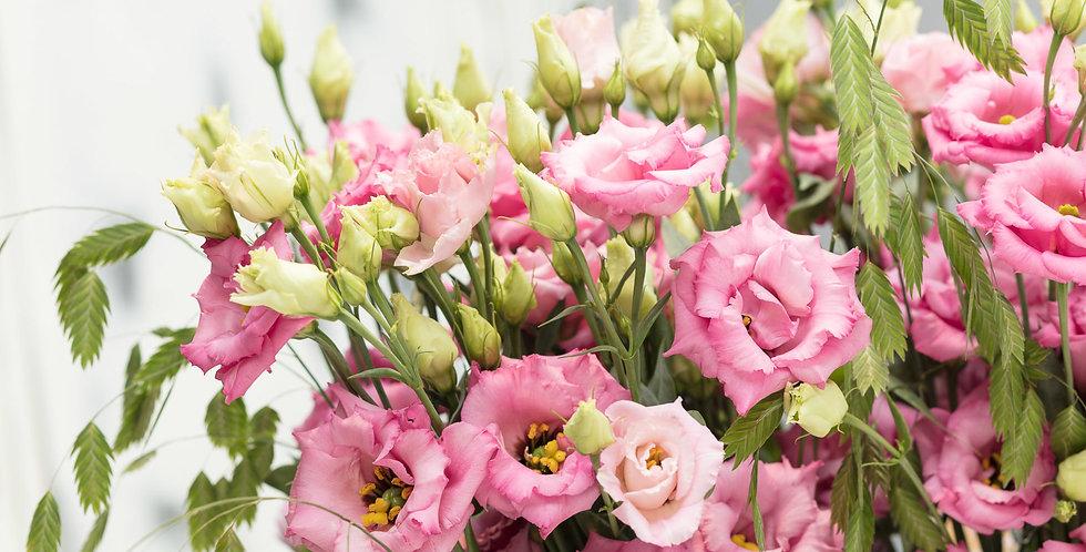 Lisianthus du corelli rose