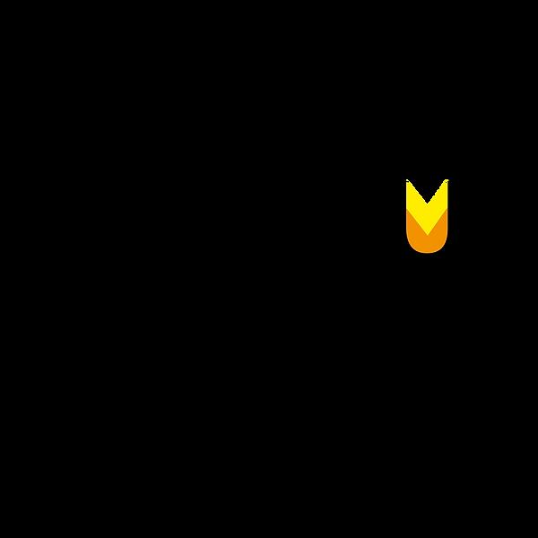 roihu logo-03.png