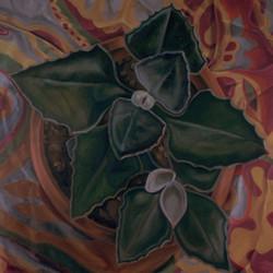 PLANT III
