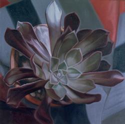 PLANT IX