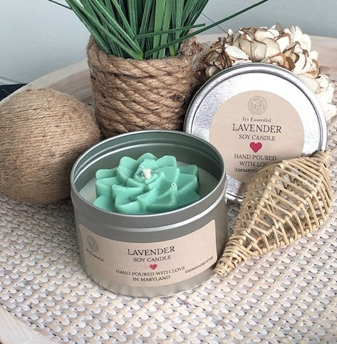 16 ounce Succulent Candle in a Tin