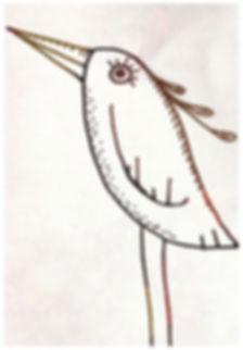 Image oiseau bio carolinebentz