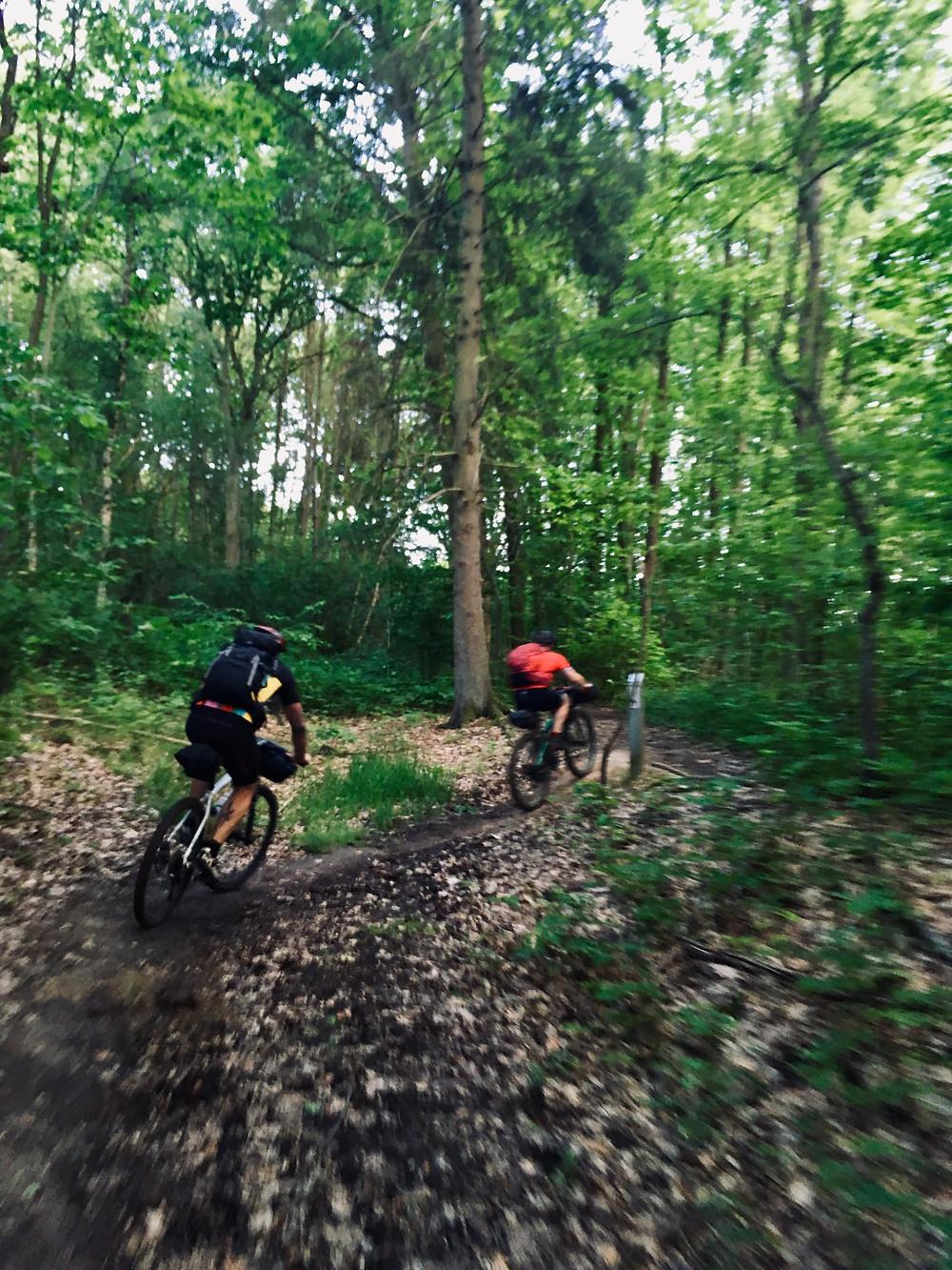 Bikepacking naar Linter mountainbikes rijden op een singletrack in een bos in Vlaams-Brabant