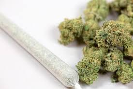 Cannabis: Wie THC, Nabilon und Cannabidiol Kranken helfen können