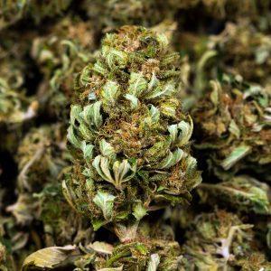 Les Fleurs Du Bien  CBD 15%