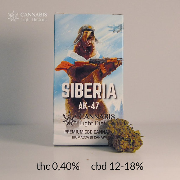 Siberia Ak47 Cannabis light district 1.gr.