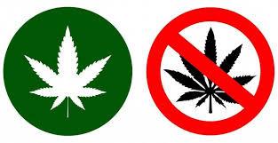 Petition: Legalisierung von Hanf als Genussmittel