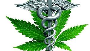 Drogenbeauftragte stellt Jahresbericht vor