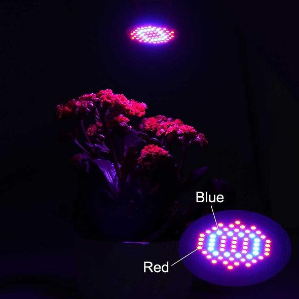 Pflanzenlampe 4W Wachstumslampe 60LED Rotes Blaues Spektrum