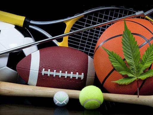 Cannabis: Der Zusammenhang von CBD, THC und die sportliche Leistung