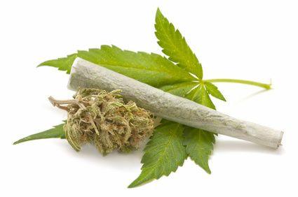 Wie hoch ist die tödliche Dosis Nikotin?