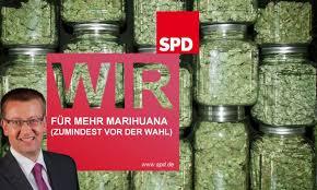 Die SPD-Bundestagsfraktion will Cannabis entkriminalisieren