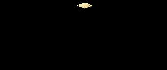 yu_logo-black-L.png