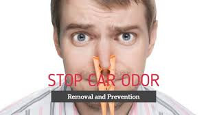 5 Benefits of Odor Removal!