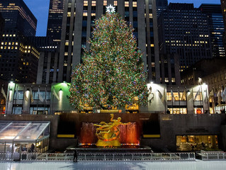 The Rockefeller Center Christmas Tree has been Chosen!  Here's your 1st Look