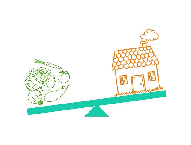 Gần một nửa số gia đình ở Mỹ không có đủ khả năng tài chính để thuê nhà và mua thức ăn