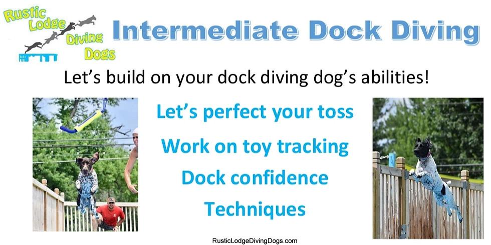 Intermediate Dock Diving (OPEN)