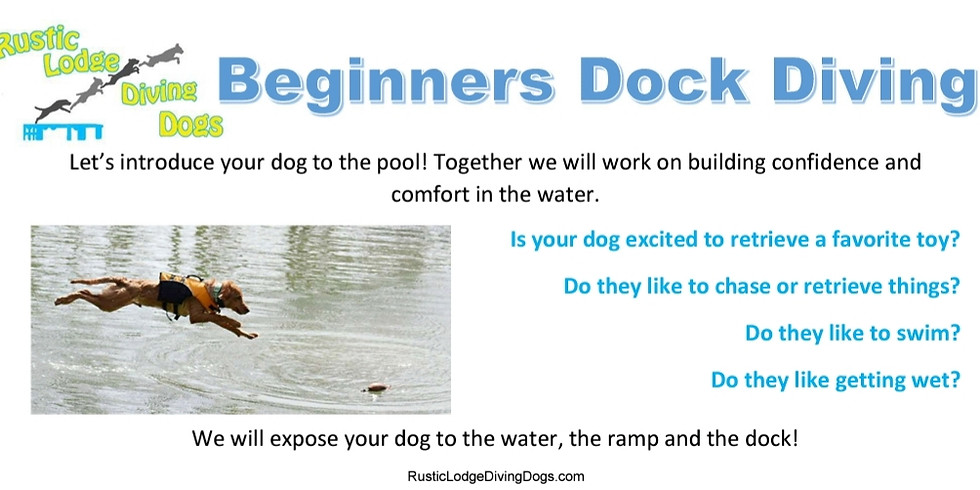 Beginners Dock Diving (CLOSED)