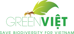 New PMP partner GreenViet