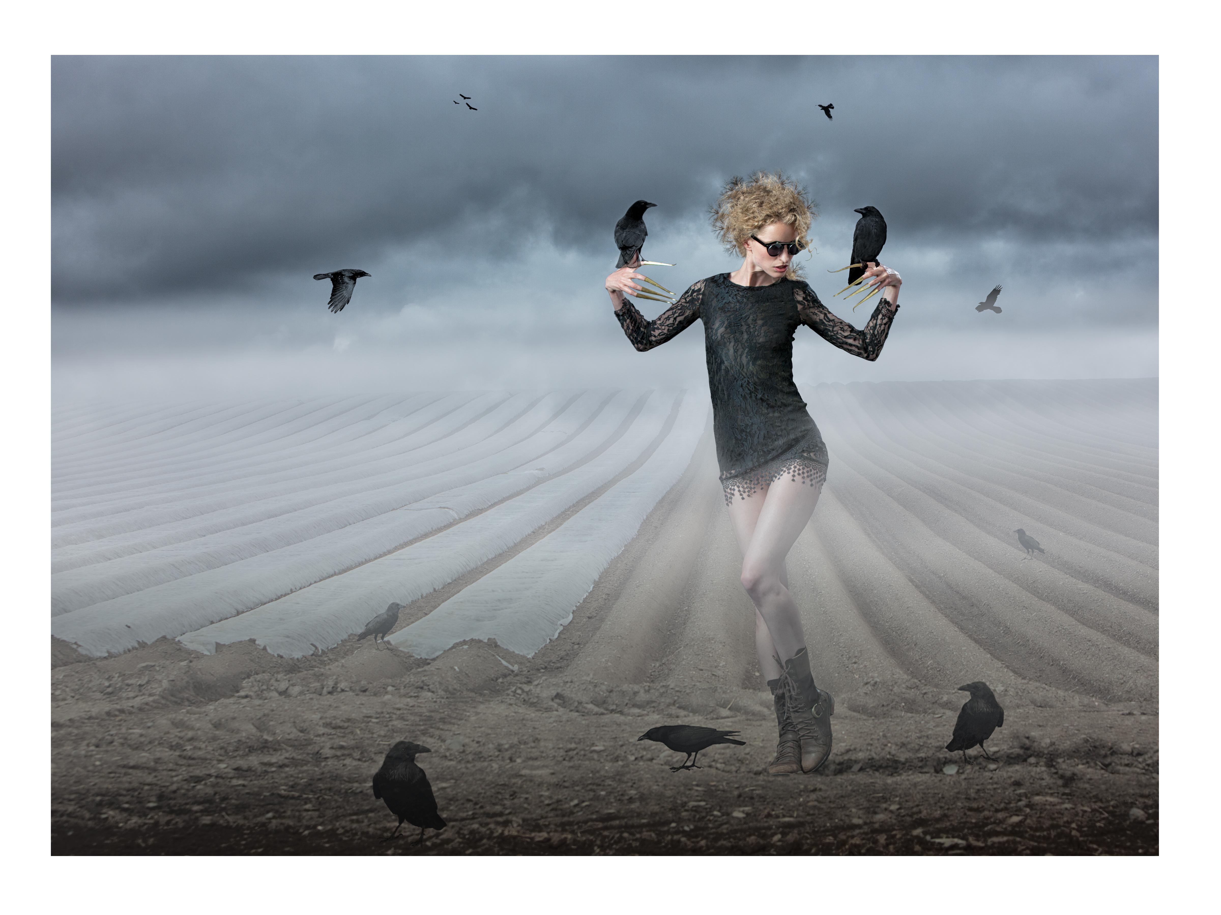 Crow Whisperer