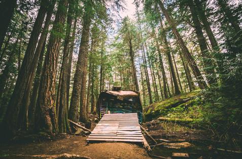 Train Wreck - Hiking Trails