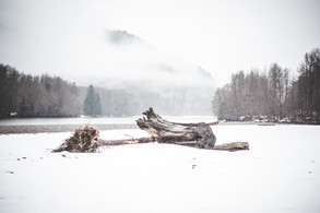 Winter Thor - Squamish River