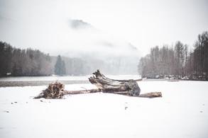 Winter Thor - Squamish River