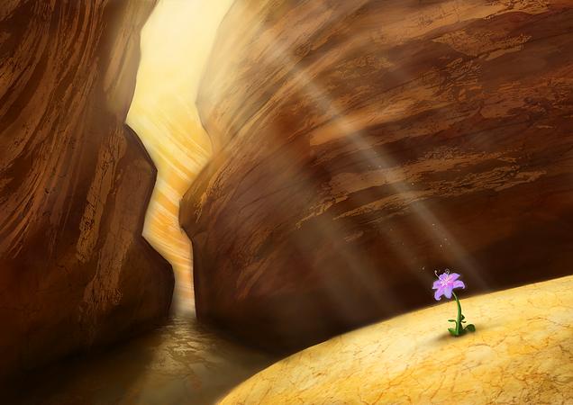 Envrionment Art Desert Rocks Flower