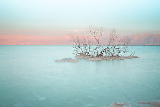 Dead Sea Magic