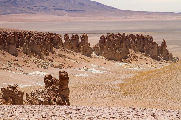 DesertoVivo