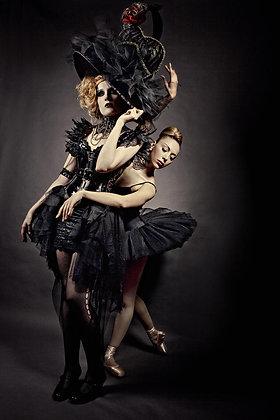 Goth Swan