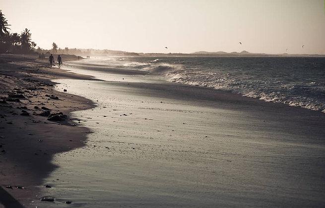 Lambendo Areia