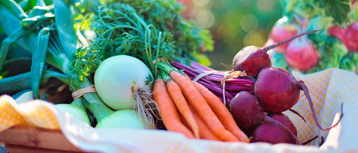 4 dicas para levar uma vida mais saudável