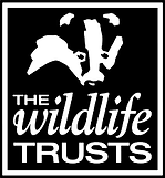 the wildlife trust logo.png
