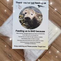 feeding us is bad.jpg