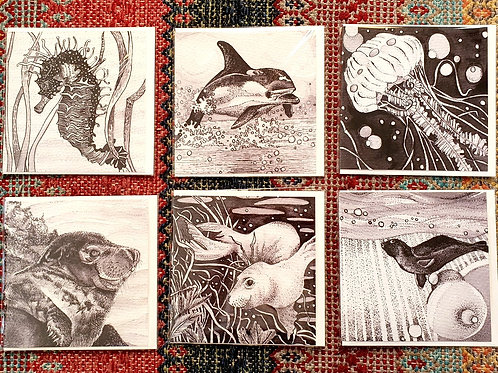 Set of six short print run cards produced exclusively for the Seal Project
