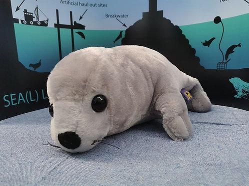 Grey seal large