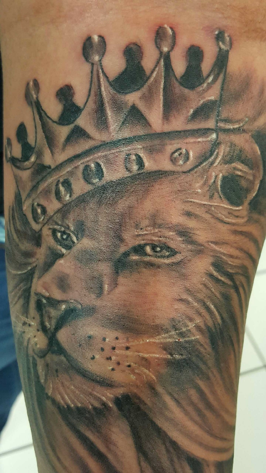 Crowned Lion