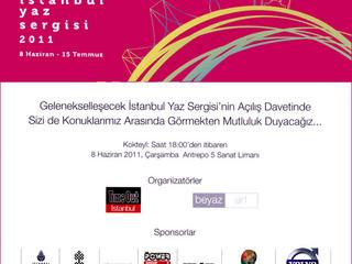 Istanbul Summer Exhibition 2011