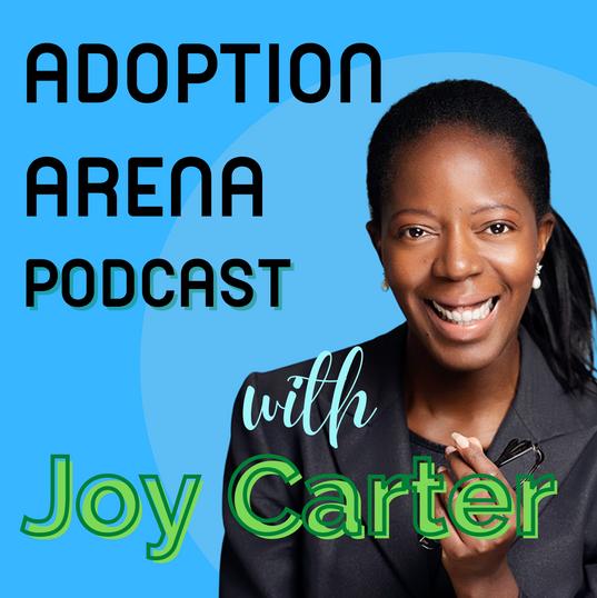 Adoption Arena Podcast Series 1