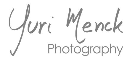 YM - Photography Gray 3.png