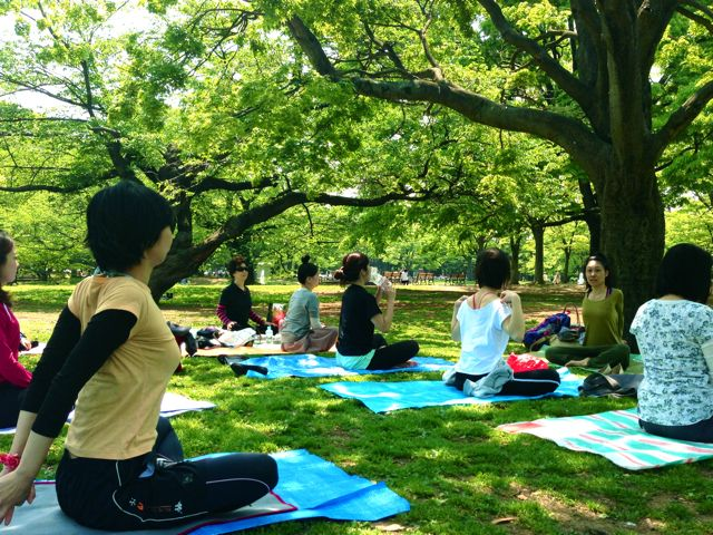 Picnic Yoga