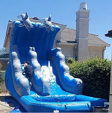 Blue Dolph Water slide jpg.jpg