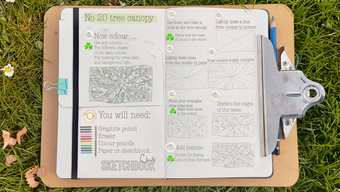 no 20 How to draw a tree canopy