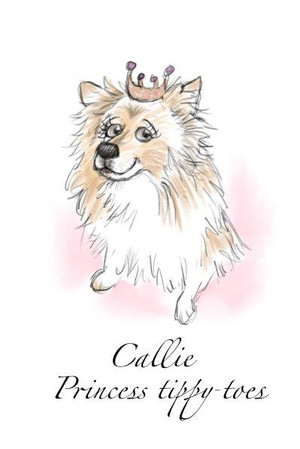 quick sketch lassie border collie caricature drawing | picky pencil caricature dogs