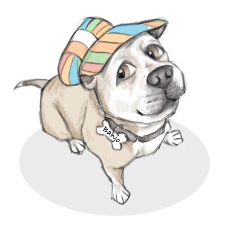 staffie dog in a rainbow hat  caricature keepsake drawing | picky pencil dog caricature