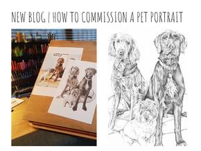 Pet portrait commissions | How it works